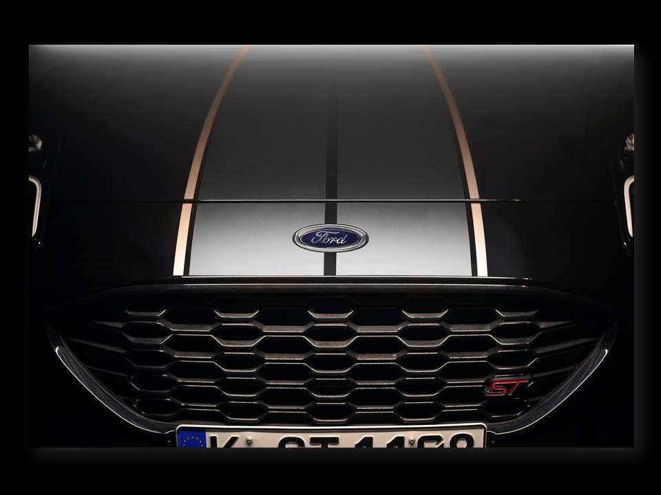 Bild: Fast drei Viertel der Stimmen entfielen auf Puma ST-Stripes (Bildrechte: Ford-Werke GmbH)