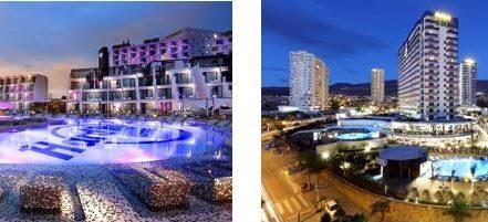 """Willkommen im """"Marketing Age of Services"""": Die beiden Hard Rock Hotels Ibiza und Teneriffa bieten Hundebesitzern ab sofort einen besonderen Service an. (Bild: Palladium Hotel Group)"""