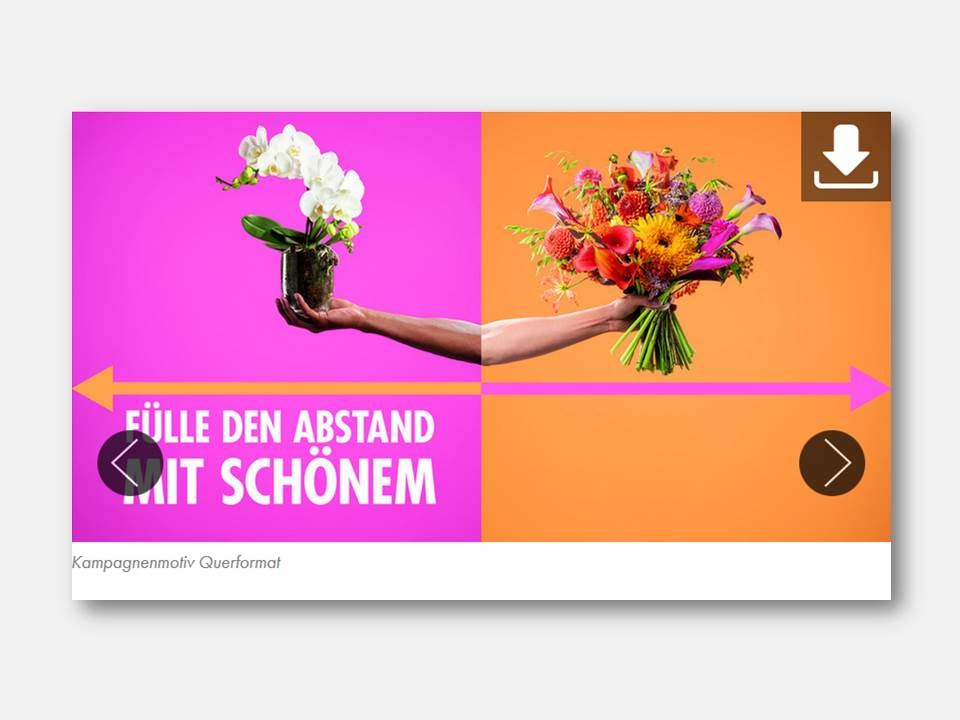 Bild: Kampagnenmotiv #FillTheDistanceWithBeauty (Copyright: Bloemenbureau Holland)