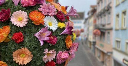 Bild: Einer der 40 bunten Blumenball in Konstanz – die Aktion der Marketing und Tourismus Konstanz GmbH ist noch bis Mitte Juni 2021 zu sehen
