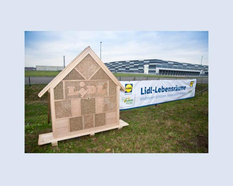 Foto: Lidl-Lebensräume rollt Programm zum Wildbienenschutz aus (Quelle: obs/LIDL/Thomas Schmidt)