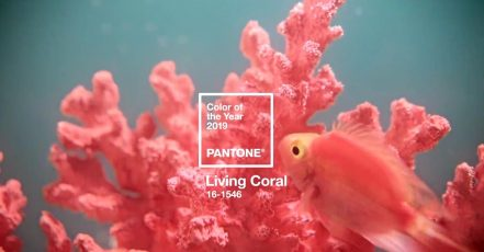 Screenshot: PANTONE Color of the Year 2019_Video (Quelle: https://store.pantone.com/de/de/color-of-the-year-2019/)