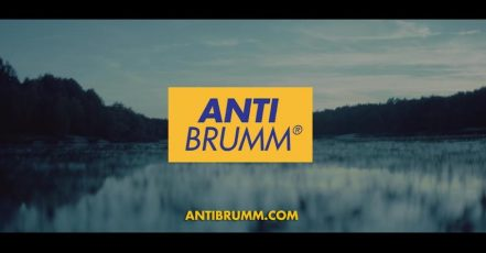 Screenshot: Anti Brumm Video https://vimeo.com/227221056 19.01.2017
