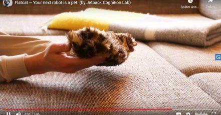 Crazy stuff: Flatcat im Video auf Youtube (by Jetpack Cognition Lab)